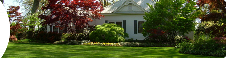 lawn care in madison